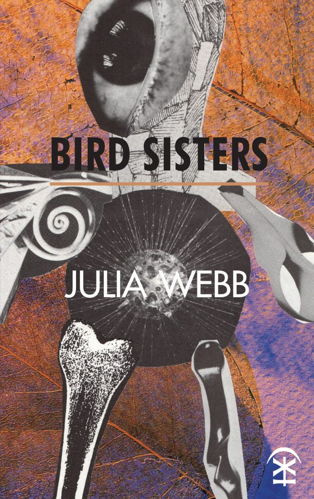 Bird Sisters Book Cover