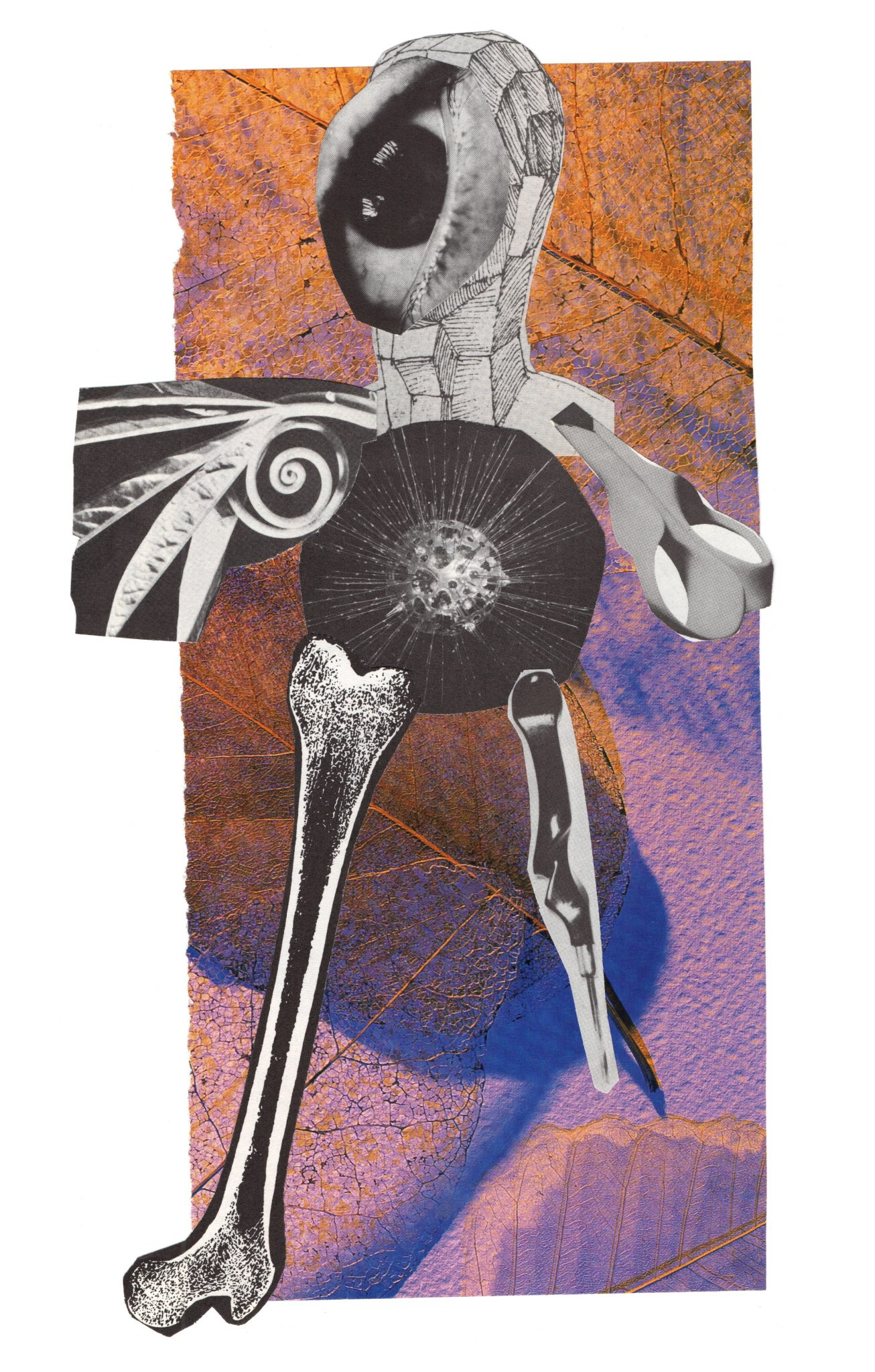 """Bird Sisters"" Collage"